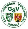 PartnerGSV